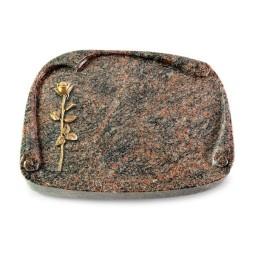 Papyros/Aruba Rose 12 (Bronze)