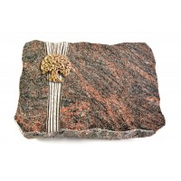 Himalaya Strikt Baum 2 (Bronze)
