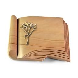 Prestige/Rainbow Lilie (Bronze)