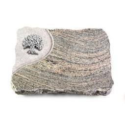 Indisch Black Folio Baum 3 (Alu)