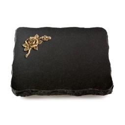 Indisch Black Pure Taube (Bronze)