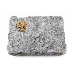 Kashmir/Delta Baum 3 (Bronze)