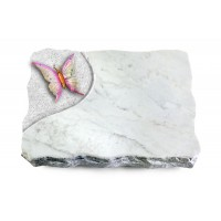 Marina Blue/Folio Papillon 1 (Color)