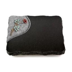 Indisch Black Folio Rose 3 (Color)