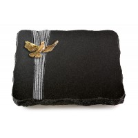 Indisch Black Strikt Papillon (Bronze)