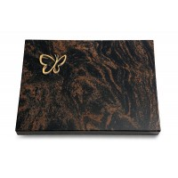 Aruba Pure Papillon (Bronze)