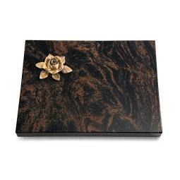 Aruba Pure Rose 4 (Bronze)