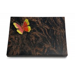 Aruba Pure Papillon 2 (Color)