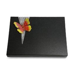 Grabtafel Aruba Delta Papillon 2 (Color)