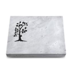 Grabtafel Kashmir Pure Baum 1