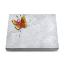 Grabtafel Kashmir Delta Papillon 2 (Color)