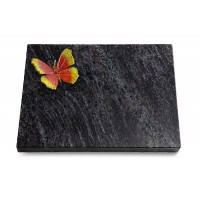 Grabtafel Kashmir Pure Papillon 2 (Color)