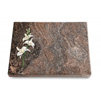 Grabtafel Orion Pure Orchidee (Color)