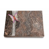Grabtafel Orion Strikt Papillon 1 (Color)