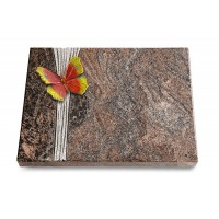 Grabtafel Orion Strikt Papillon 2 (Color)
