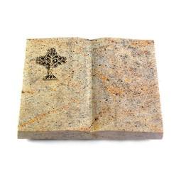 Livre/New Kashmir Baum 1 (Bronze)
