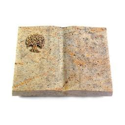 Livre/New Kashmir Baum 2 (Bronze)