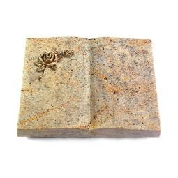 Livre/New Kashmir Taube (Bronze)