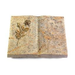 Livre/New Kashmir Rose 12 (Bronze)