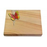 Grabtafel Rainbow Delta Papillon 2 (Color)
