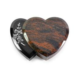 Amoureux/Aruba Rose 5 (Alu)