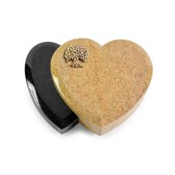 Amoureux/Aruba-Black Baum 3 (Bronze)