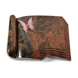 Prestige/Aruba Orchidee (Color)
