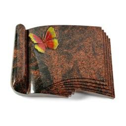 Prestige/Aruba Papillon 1 (Color)
