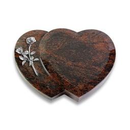 Amoureux/Aruba Rose 6 (Alu)