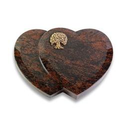 Amoureux/Aruba Baum 1 (Bronze)