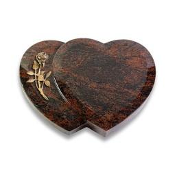 Amoureux/Aruba Rose 5 (Bronze)