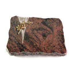 Aruba Delta Taube (Bronze)