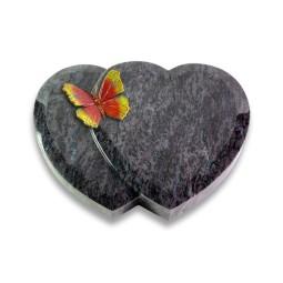 Amoureux/Himalaya Papillon 2 (Color)