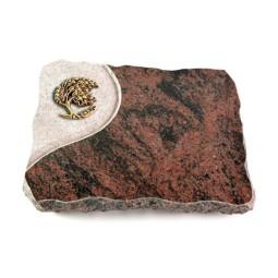 Aruba Folio Ähren 1 (Bronze)
