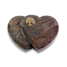 Amoureux/Orion Baum 3 (Bronze)