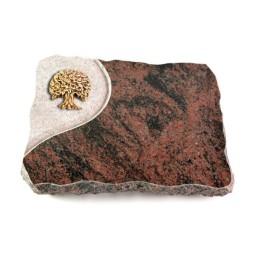 Aruba Folio Baum 2 (Bronze)