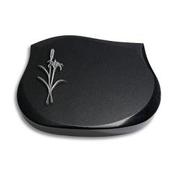 Cassiopeia/Indisch-Black Lilie (Alu)