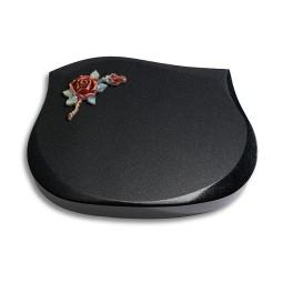 Cassiopeia/Indisch-Black Papillon 2 (Color)