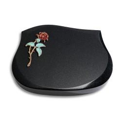Cassiopeia/Indisch-Black Rose 1 (Color)