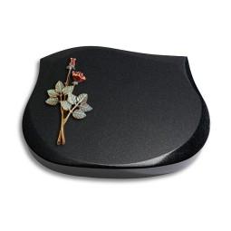 Cassiopeia/Indisch-Black Rose 4 (Color)