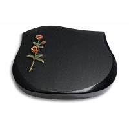 Cassiopeia/Indisch-Black Rose 5 (Color)