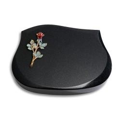 Cassiopeia/Indisch-Black Rose 6 (Color)