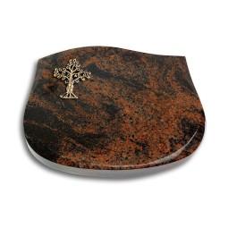 Cassiopeia/Indisch-Black Baum 2 (Bronze)
