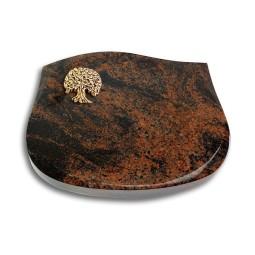 Cassiopeia/Indisch-Black Baum 3 (Bronze)