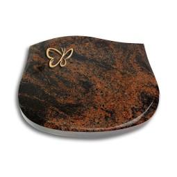 Cassiopeia/Indisch-Black Papillon (Bronze)