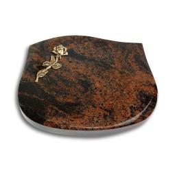 Cassiopeia/Indisch-Black Rose 7 (Bronze)