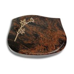 Cassiopeia/Indisch-Black Rose 9 (Bronze)
