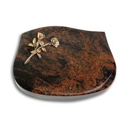 Cassiopeia/Indisch-Black Rose 10 (Bronze)