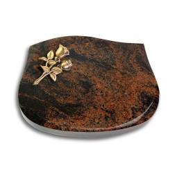 Cassiopeia/Indisch-Black Rose 11 (Bronze)