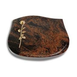 Cassiopeia/Indisch-Black Rose 12 (Bronze)
